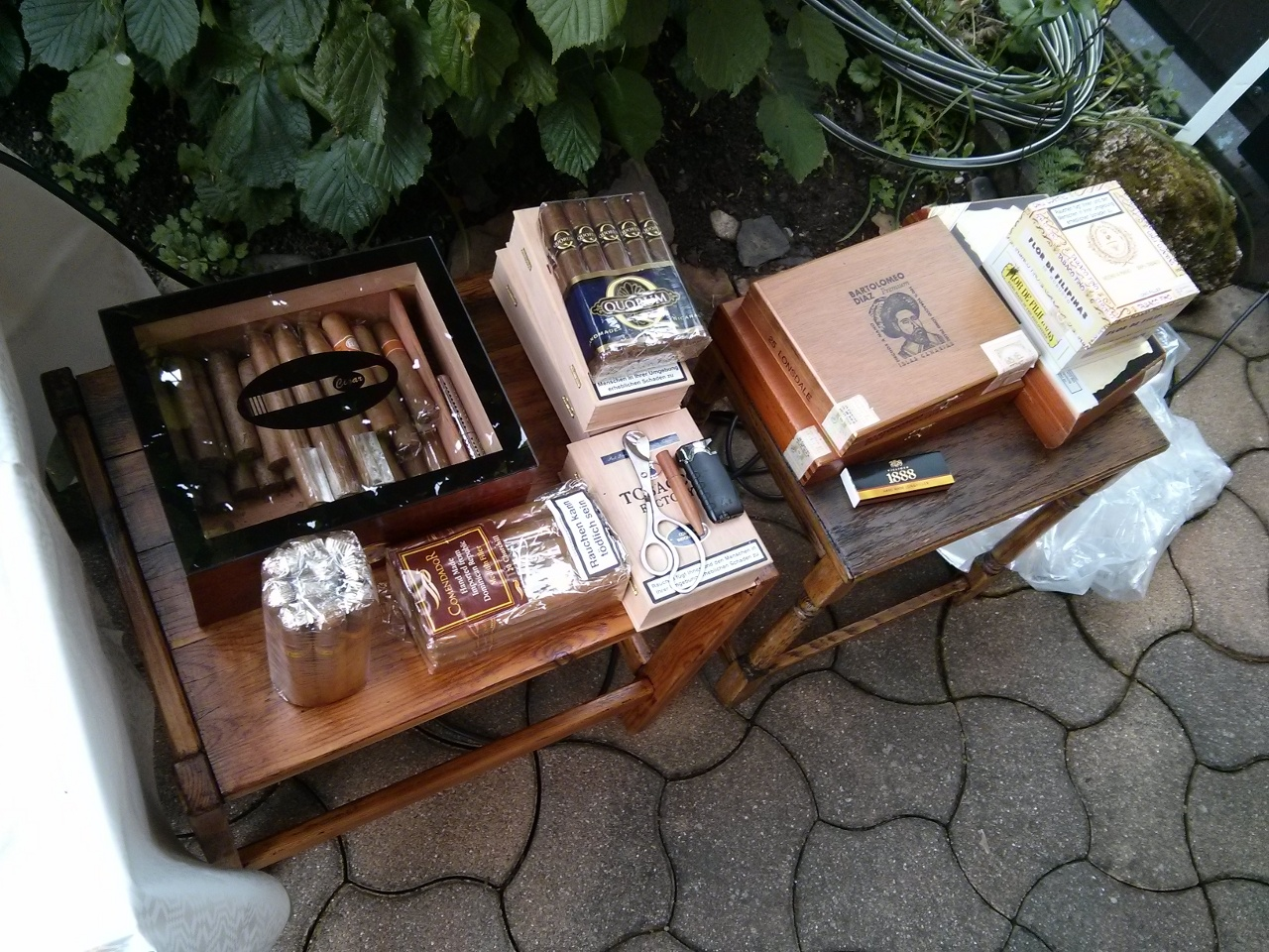 Die Zigarrenauswahl